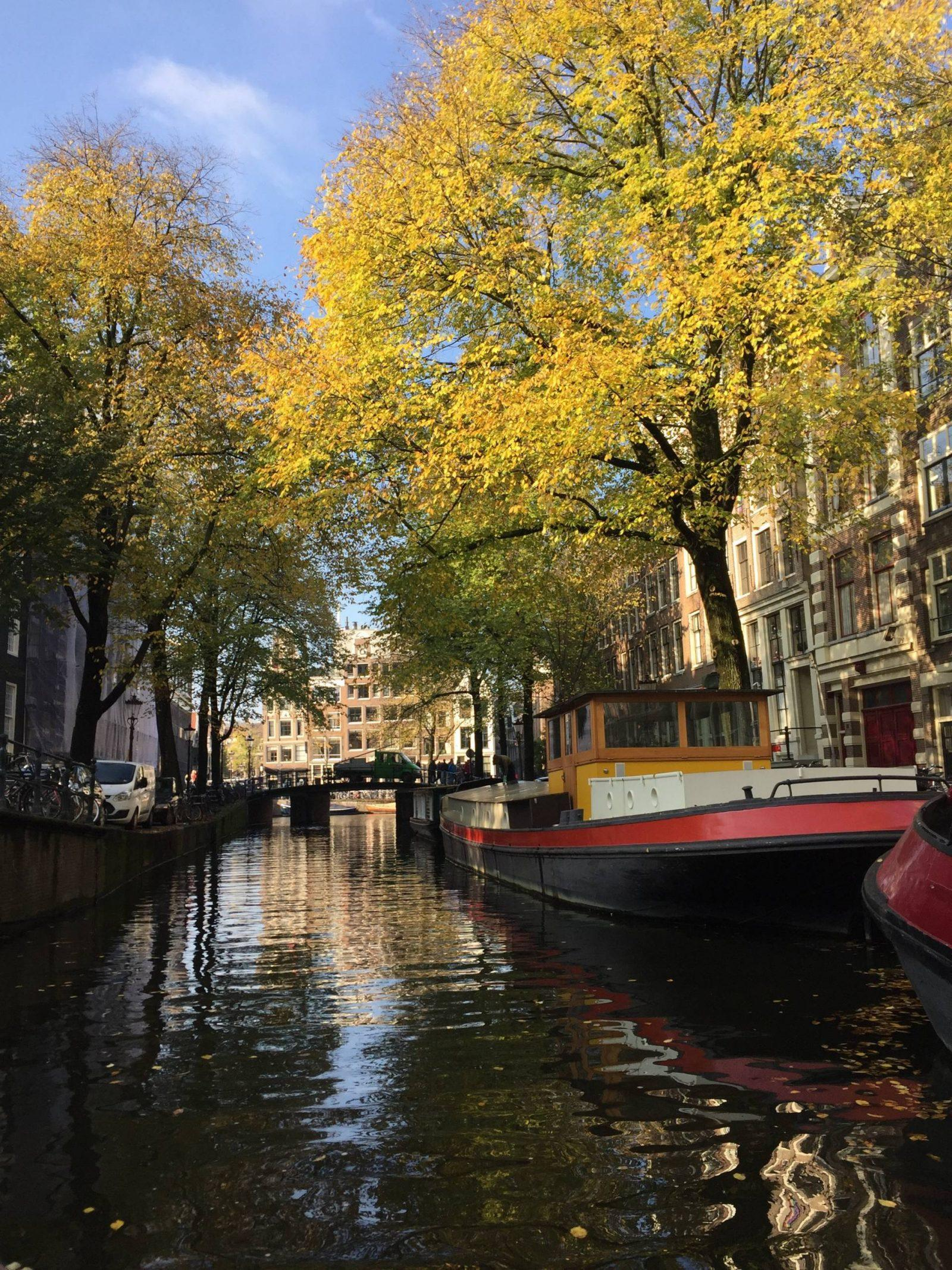 What to Know Before Taking a Canal Cruise in Amsterdam