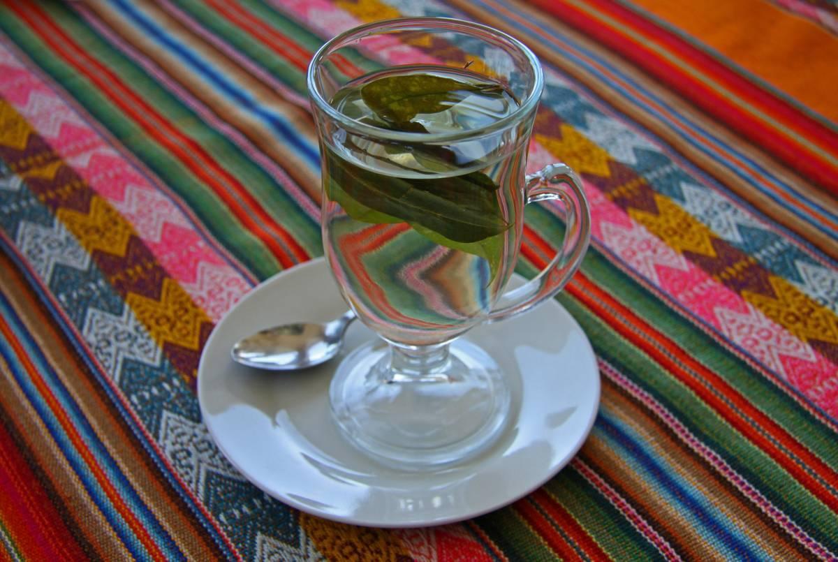 Cup of coca tea