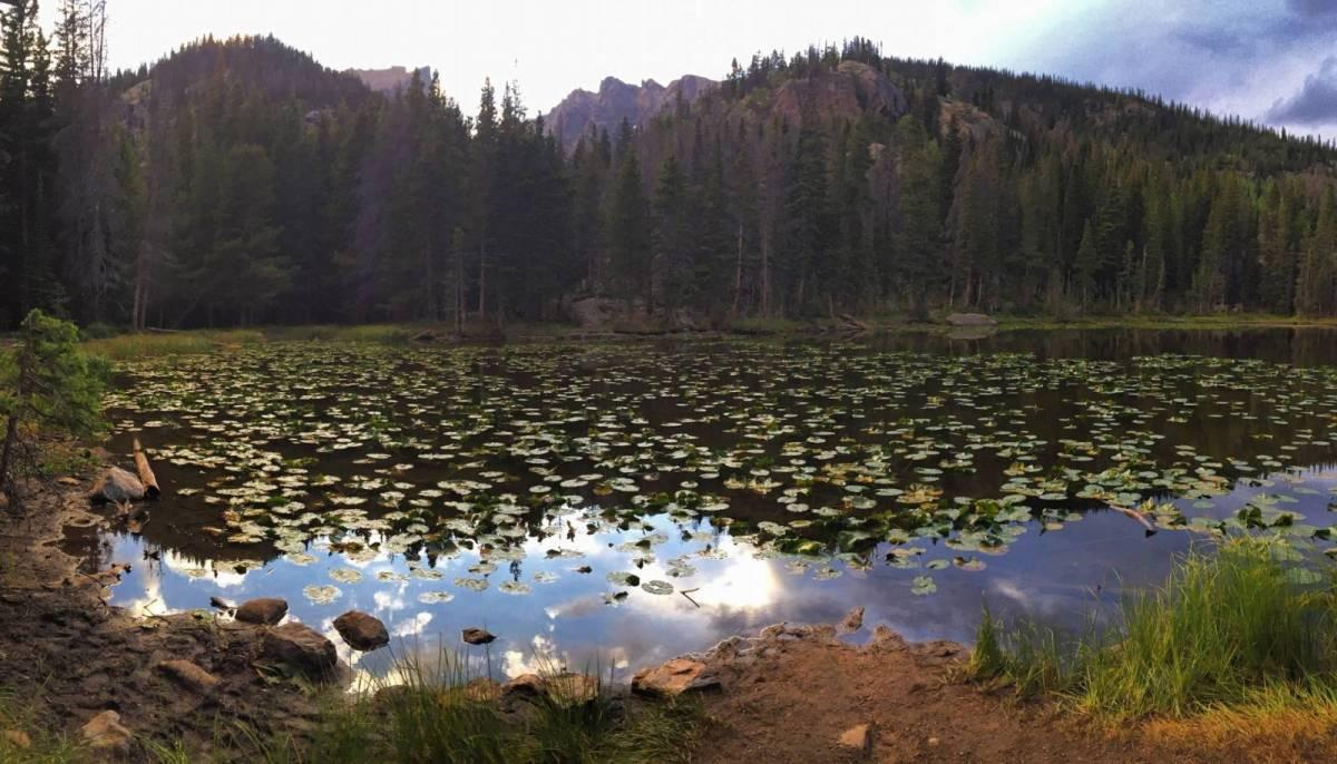 Tips for Hiking Bear Lake Trail in Rocky Mountain National