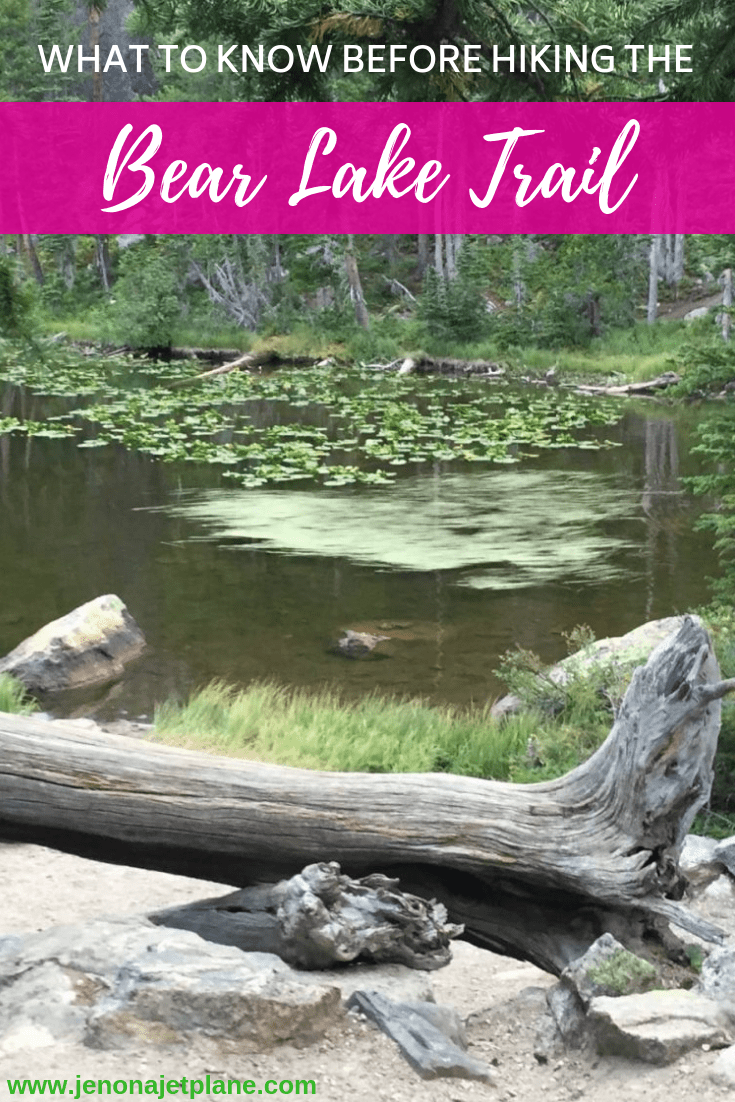 Bear Lake Trail in Rocky Mountain National Park features four alpine lakes and makes a gorgeous day hike. Here's what you need to know before you go. Save to your travel board for future reference. #bearlakecolorado #rockymountainnationalpark #coloradotravel #coloradohiking #coloradohikes #nationalparktrips #nationalparktravel