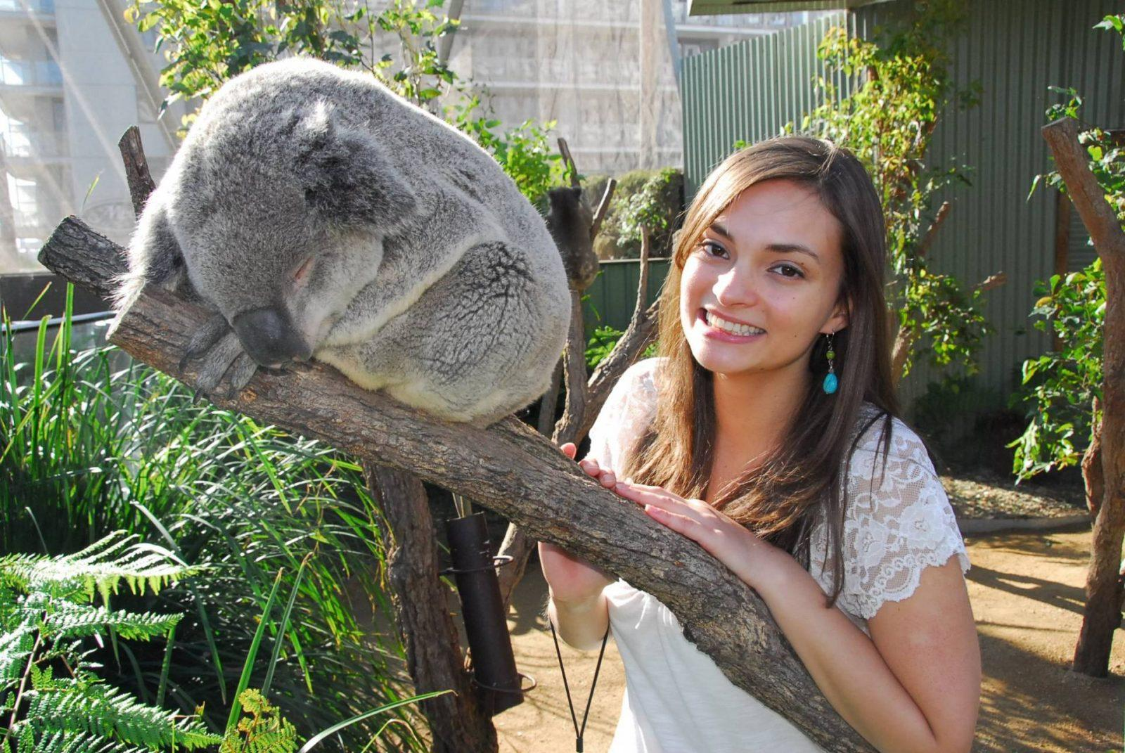 Meeting a Koala and Kangaroo in Sydney, Australia
