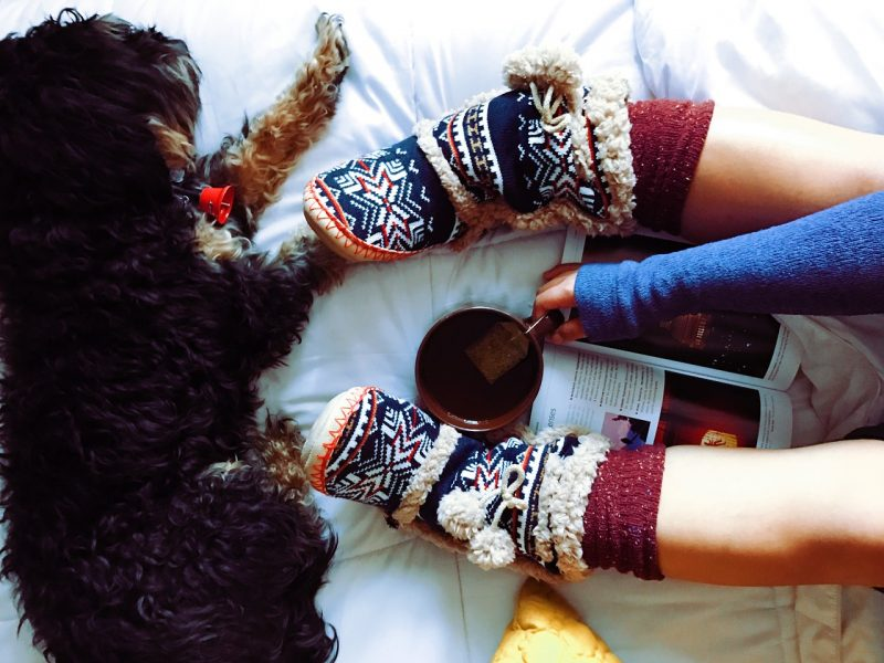 Laying on bed with slippers, books and dog