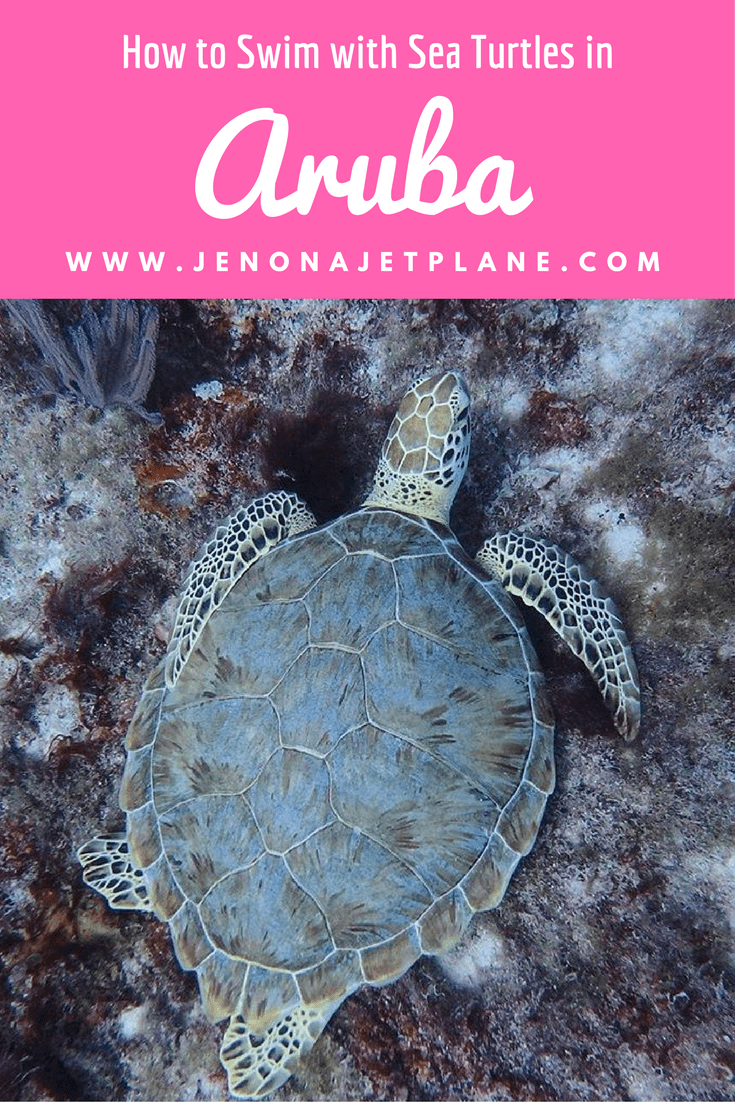 Explore shipwrecks and swim with sea turtles on an underwater adventure with Seabob Aruba!