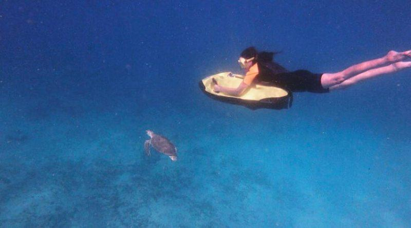 Seabob Aruba: Exploring Shipwrecks and Swimming with Sea