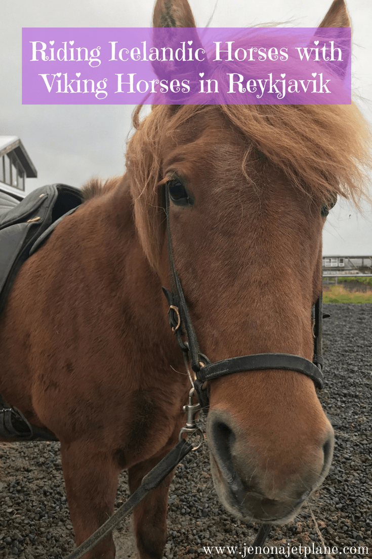 Viking Horses provides horseback riding tours in Reykjavik, Iceland. Explore other-wordly landscapes on your 2 hour plus experience! Save to your travel board for inspiration, this is the best horseback riding tour in Iceland.