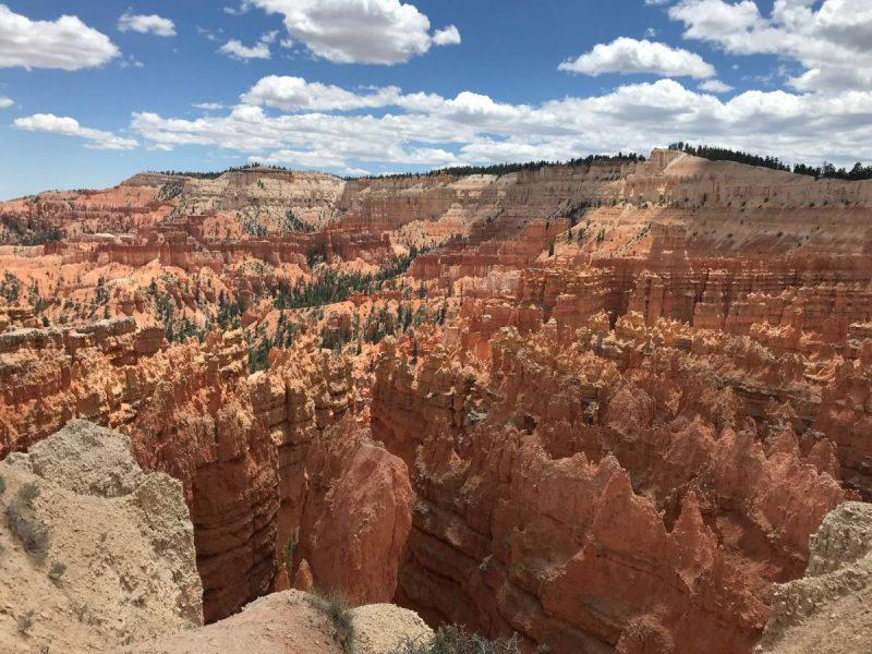 View of Bryce Canyon from Sunrise Point