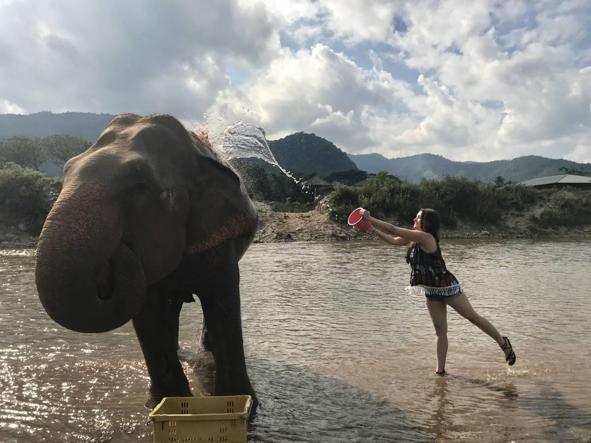 Visiting Elephant Nature Park: The Best Elephant Sanctuary