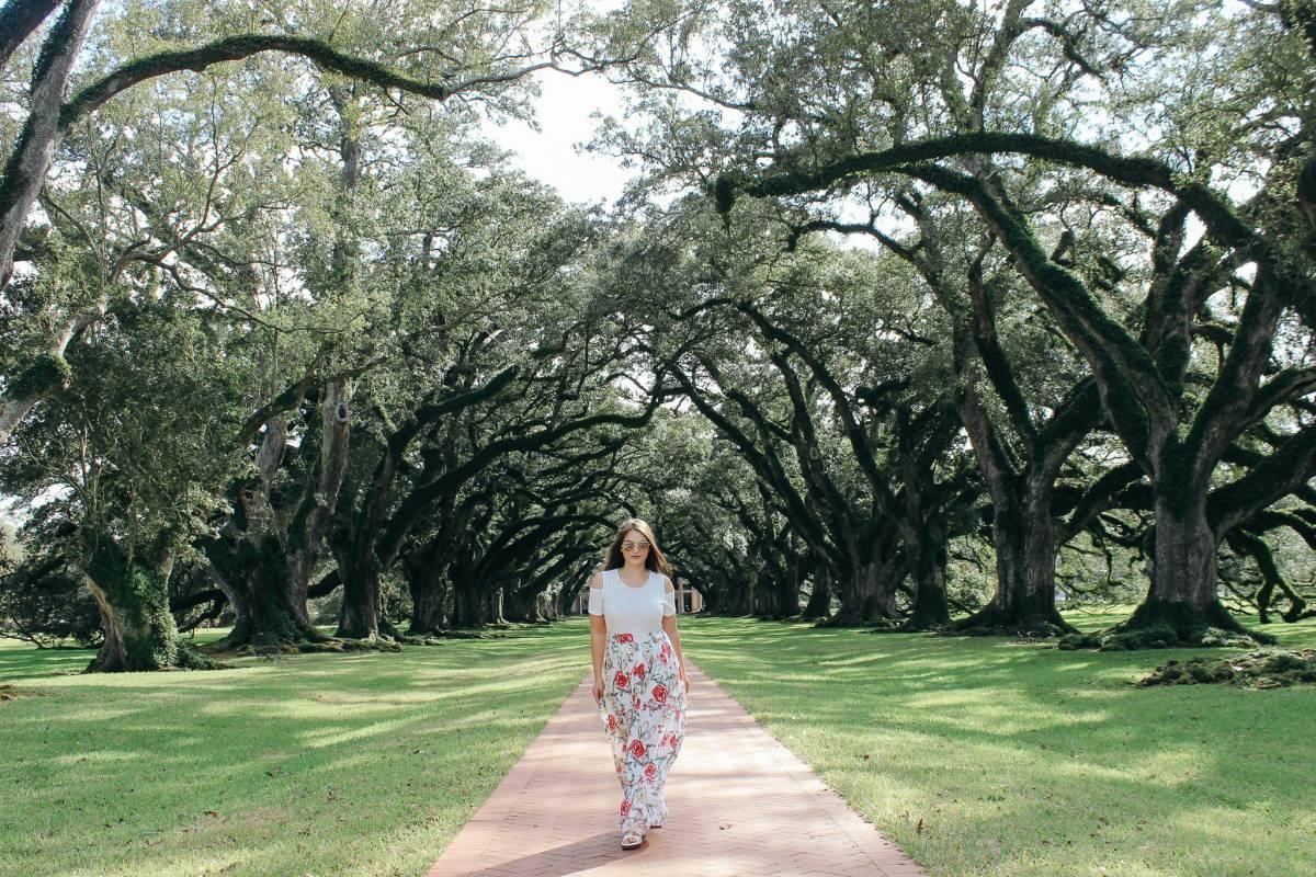 Walking down the path at Oak Alley Plantation