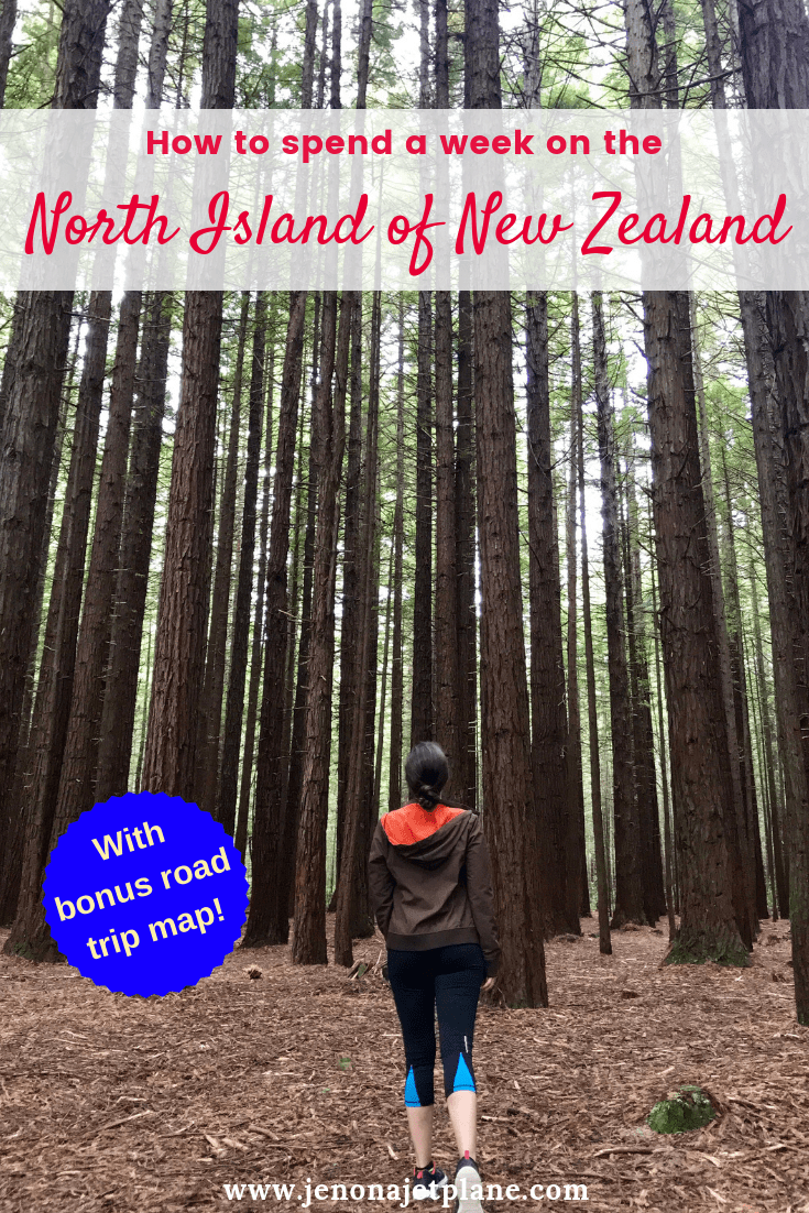 Want to know how to spend one week in the North Island of New Zealand? From redwood forests to glowworm caves, here's everything you can't miss -- self-guided road trip map included! Save to your travel board for future reference. #newzealand #newzealandnorthisland #newzealandtravel #thingstodoinNewZealand #travelnewzealand