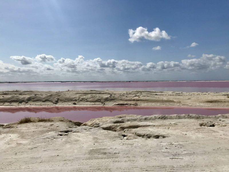 View of Las Coloradas on the drive in