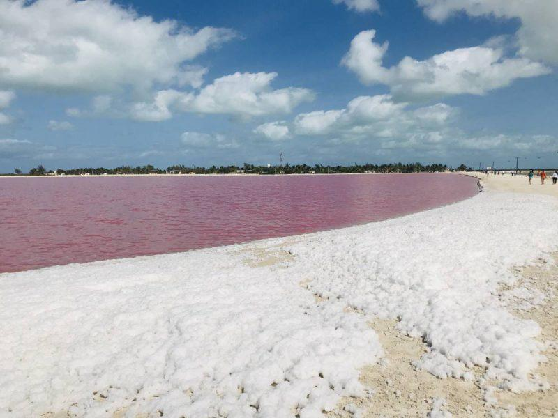 Bright view of the pink lakes