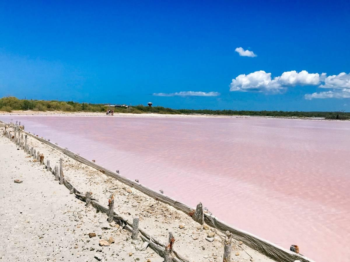 Finding Pink Lakes in Cabo Rojo: How to Visit the Salinas of Puerto Rico