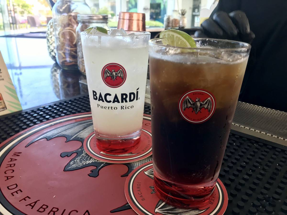Visiting Casa Bacardí: A Review of the Bacardi Factory in Puerto Rico