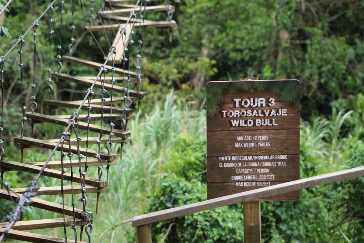 Toro Verde Puerto Rico Trail
