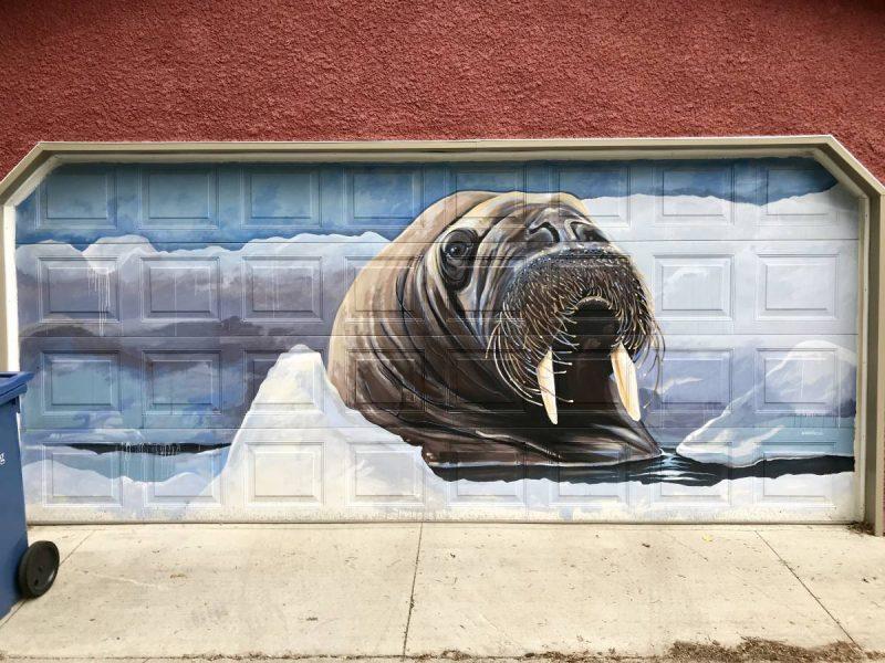 Walrus street art on garage door