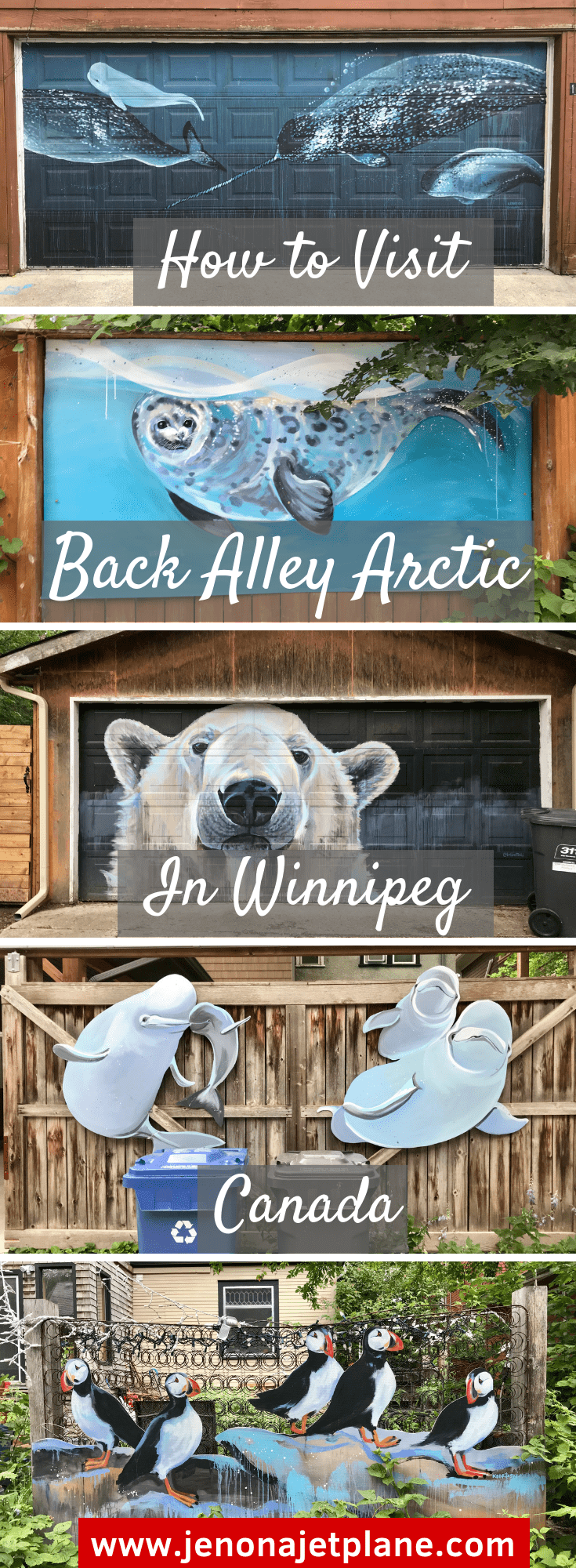This street art installation is unlike any other, painted on garage doors and raising awareness about climate change. Learn all about Back Alley Arctic in Winnipeg, Canada! #Winnipeg #streetart #Arctic #climatechange #graffitiart
