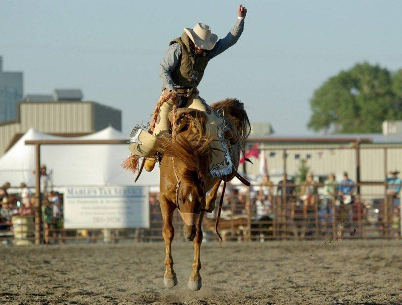 Things to do in Cody, WY rodeo