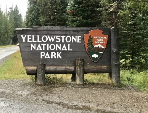 Into the Wild: The Ultimate Guide to Planning Your Yellowstone Itinerary