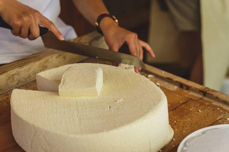 Person cutting cheese from a wheel