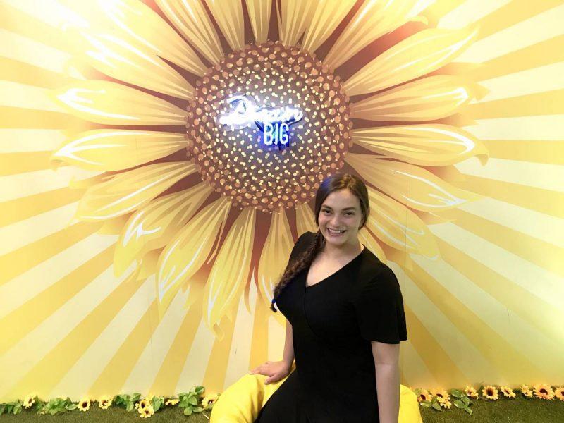 Bright sunflower exhibit