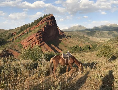 Bucket List Check: 12 Unique Things to do in Kyrgyzstan