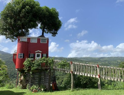 A Review of El Yunque View Treehouse, A Tiny House in Puerto Rico
